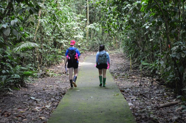 Walking-on-the-path-750x498